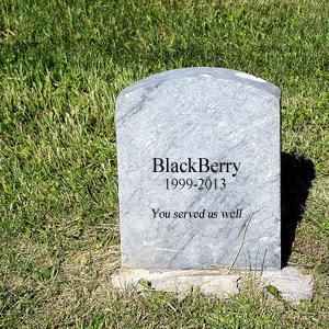 blackberry-death-small
